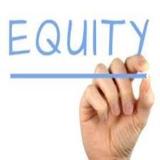 sweat equity shares india